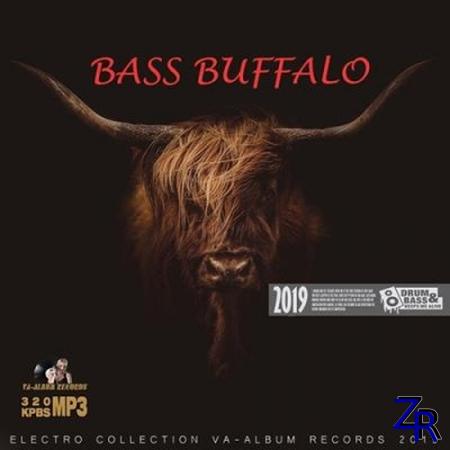 Bass Buffalo (2019)